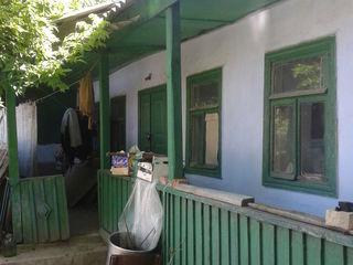 два дома,с большим участком в центре Криулян.Торг уместен.