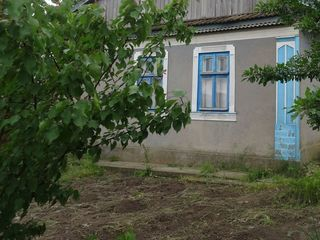 Se vinde casa in satul Zaim, raionul Causeni.