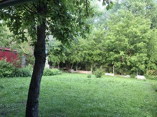 Spre chirie jumatate de casa, curte separata, terasa, zona de parc...