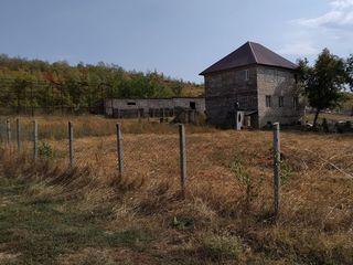 мини ферма