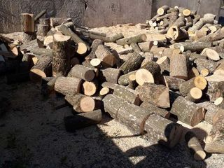 livram la domiciliu lemne de foc, specii tari (stejar, carpen, frasin) la preturi accesibile!