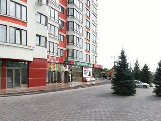 Imobil comercial, 130-260m2, Alba Iulia, Buiucani