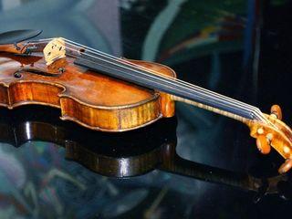 Cumpar vioara44  Куплю скрипку 44