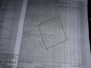 teren pentru constructii in or Leova/ urgent