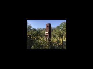 Дачный участок 15 соток в лесу