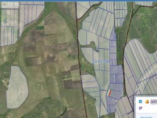 Sangera teren agricol 30ari,gradina 8ari