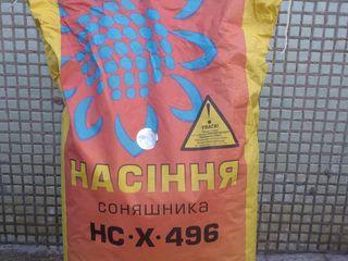 Продаю семена подсолнуха нс-х 496 производство  г.Новый сад (Сербия). Импорт из Украины.