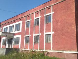 2000 m2 Оргеев центр