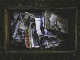 Реставрация старых фотографий (Кишинев, Ботаника)