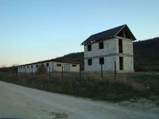 Teren cu construtie agricola, 50Ari, Calarasi!!!