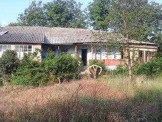 6 sote . casa trebu de demolat  or de reparat .  4000  euro .  ultemul  pret  3600  euro