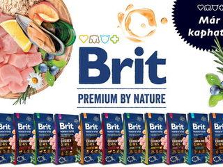 Сухой корм Brit для кошек и собак премиум и супер-премиум класса с бесплатной доставкой на дом!!!