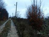 Lot pentru constructii Ivancea linga Orheiul Vechi