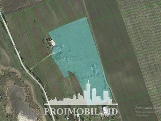 Lot! com. Piatra, 400 ari, p/u fabrică/fermă/bază de odihnă! 55000 €