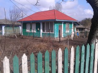 Дом в Рышканах.