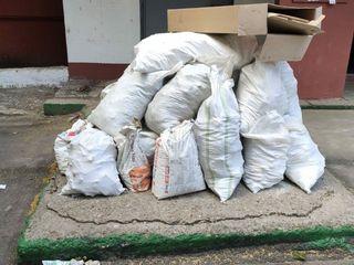 Evacuarea gunoiului rapid si curat, hamali