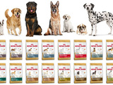 "Сухие корма "" royal-canin "" !!!"
