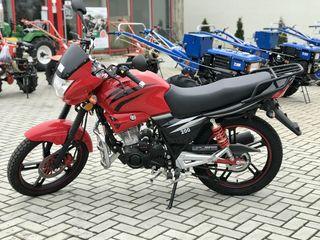 Viper ZS150A (or.Balti)