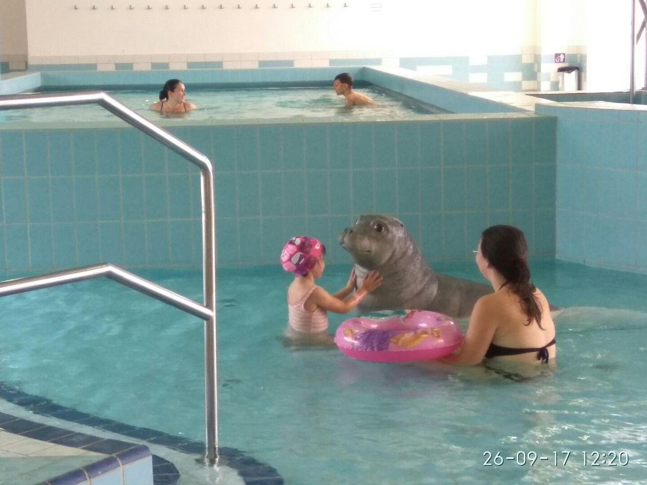 înotul tratează artroza)
