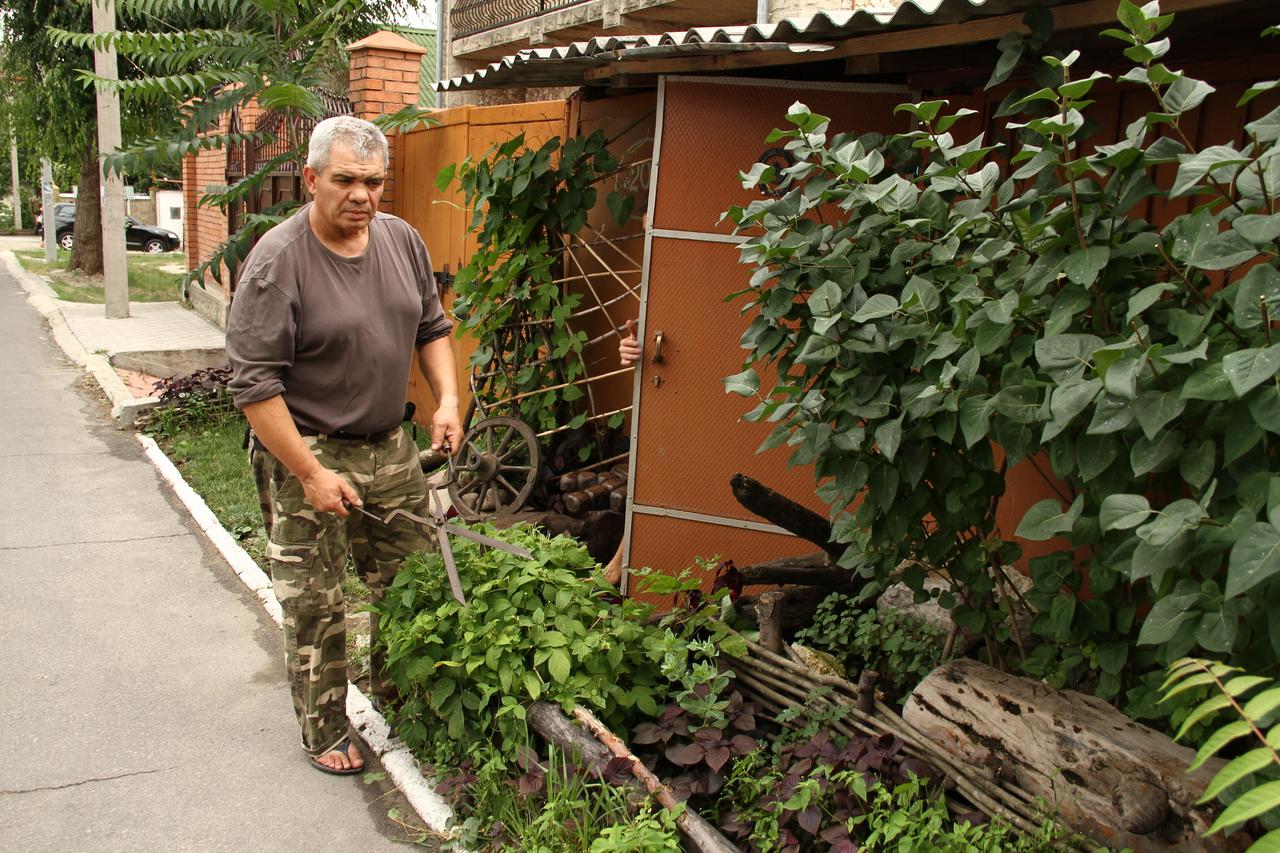 С садовником на лужайке 26 фотография