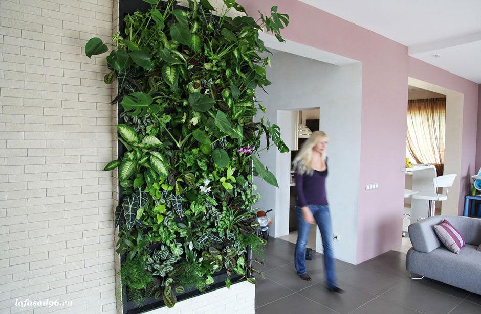 Вертикальное озеленение стен: дом, офис, магазин...любое пом.