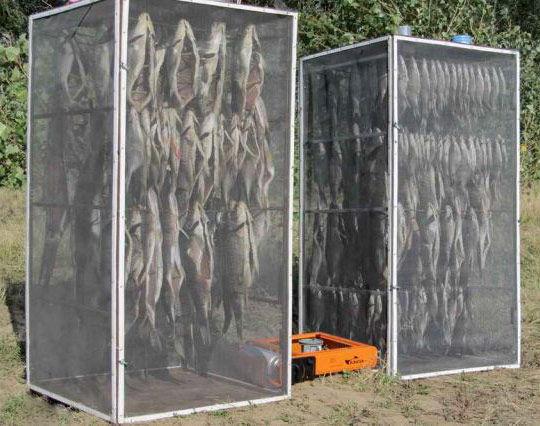 Купить рыбу для вяления