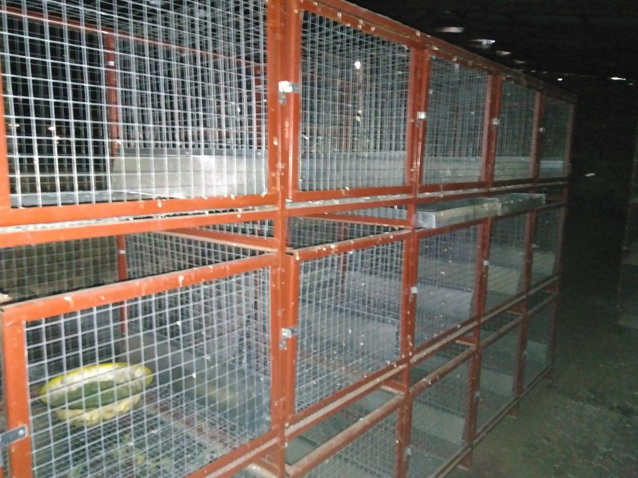 Клетка для кроликов из поддонов своими руками