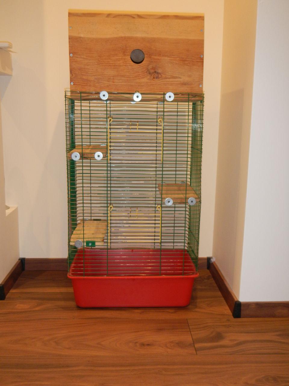 Фото клеток для шиншилл в домашних условиях