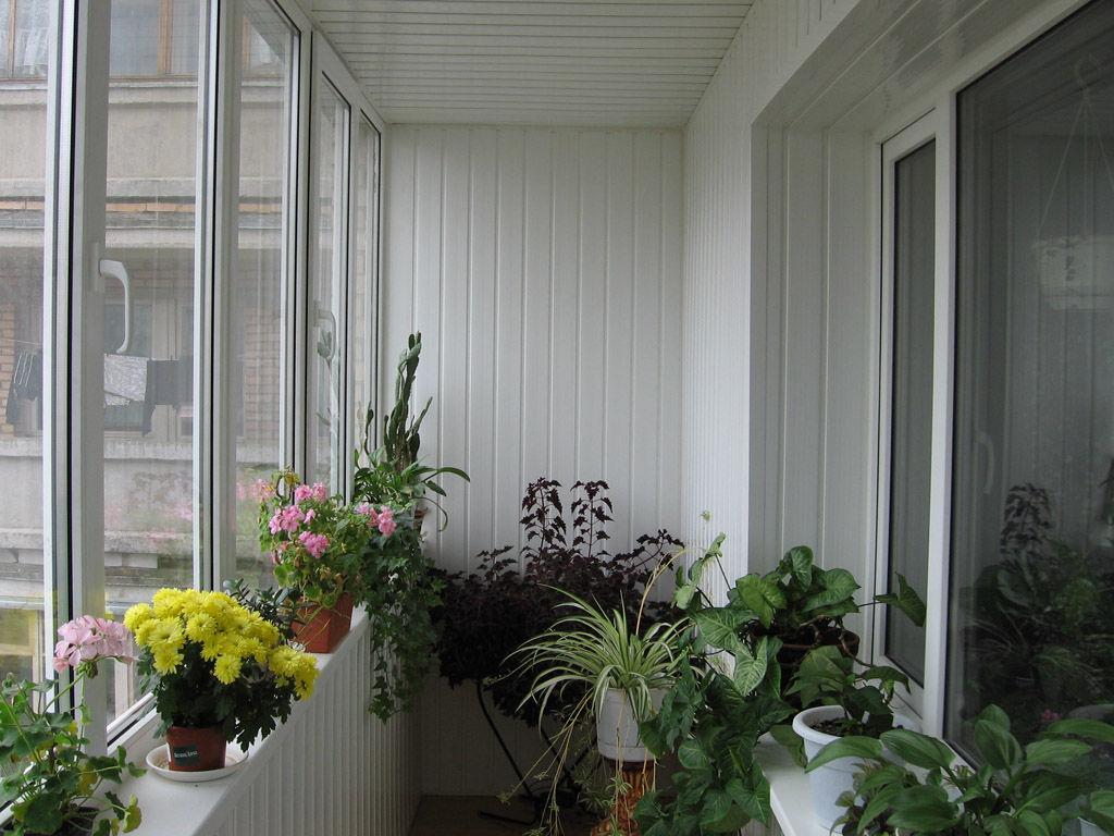 Сделать ремонт балкона, лоджии кривой рог цена, недорого: пр.