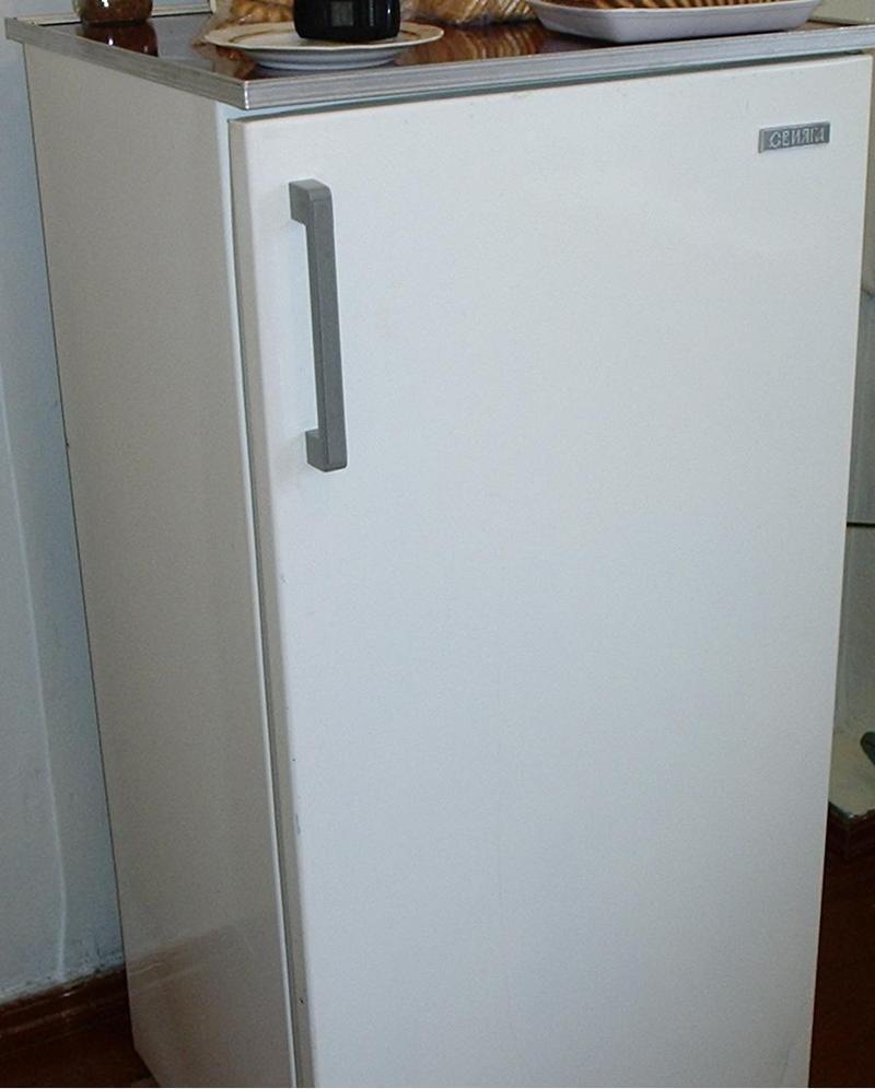 какой холодильник выбрать в пределах 30 тыщ рублей