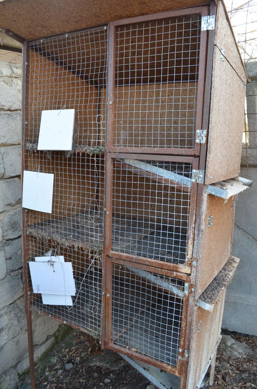 Клетка для кроликов молодняка
