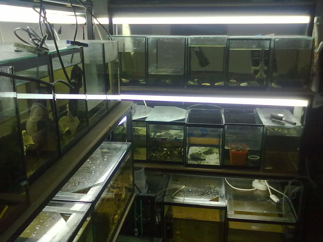 аквариумные хозяйства фото пневматический компрессор