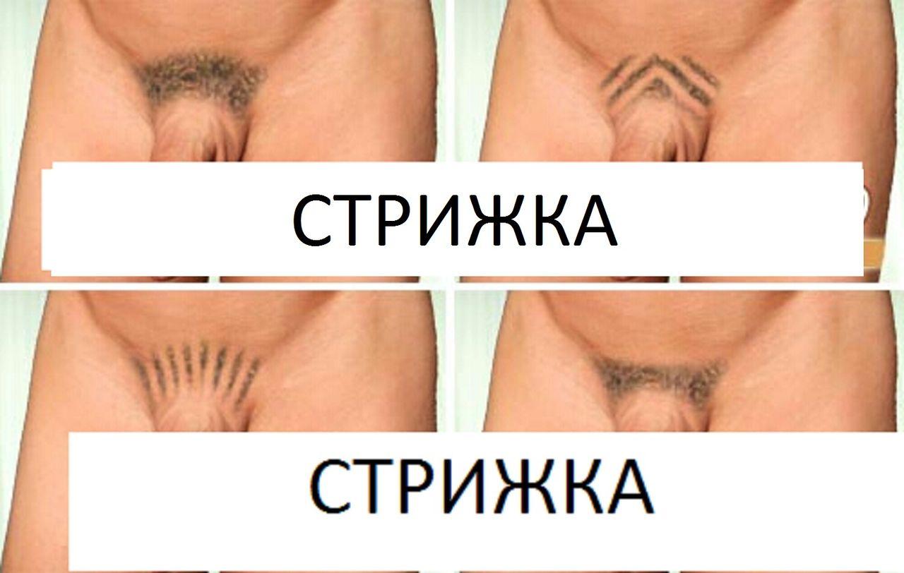 Женские и мужские интимные стрижки