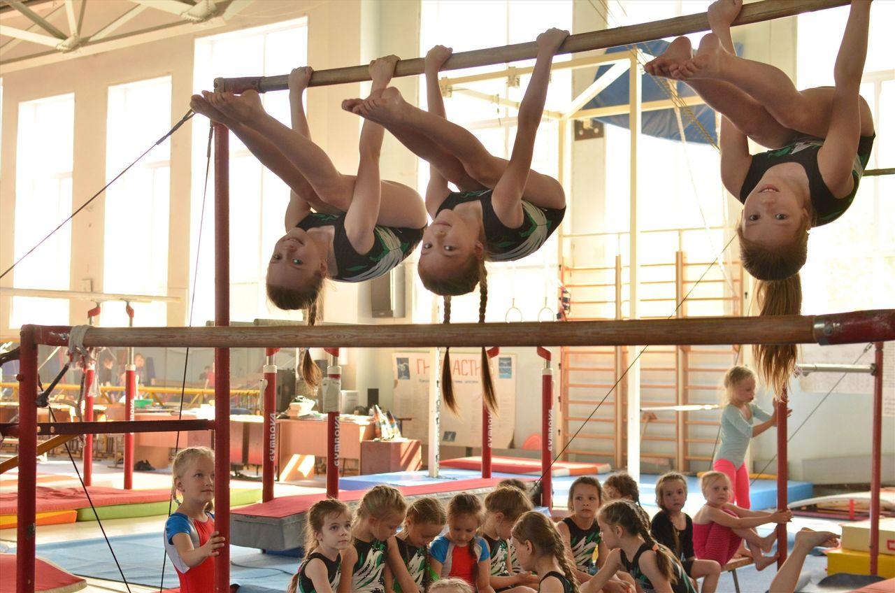 Занятие по гимнастике