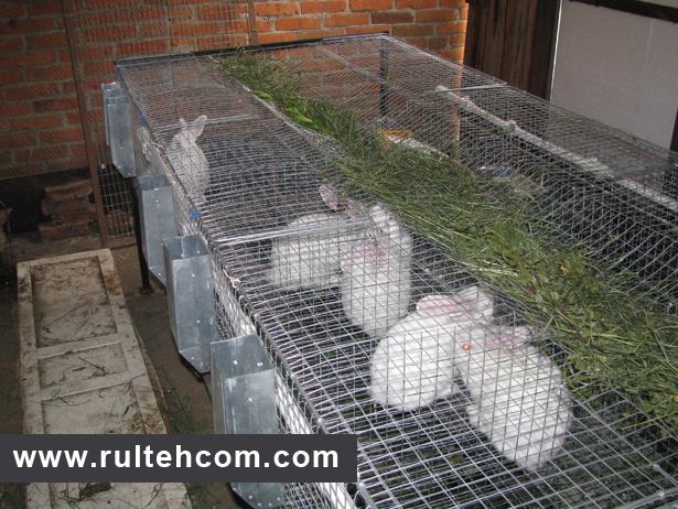 Клетка для кролей из сетки