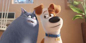 Тайная жизнь домашних животных 2 3D (Ру)