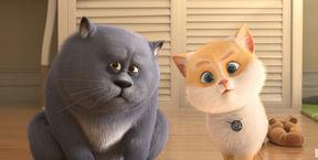 Большой кошачий побег 3D (Ру)