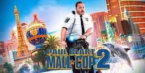 Paul mare poliţist la mall