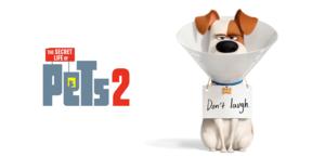 Тайная жизнь домашних животных 2 3D (Ro)
