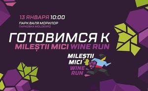Готовимся к Mileștii Mici Wine Run