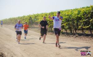 Проведите последние выходные лета на Purcari Wine Run 2019
