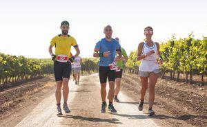 Purcari Wine Run 2018: Узнай что нового ждет тебя в этом году