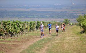 În Moldova s-a încheiat cea de-a treia cursă vinicolă Purcari Wine Run