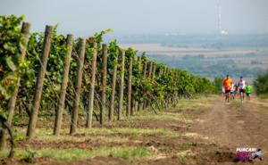 Звезда сериалов «Универ» и «СашаТаня» примет участие в Purcari Wine Run
