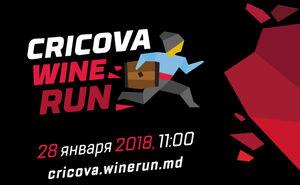 Осталось всего 25 мест на Cricova Wine Run