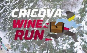 Официальное видео Cricova Wine Run