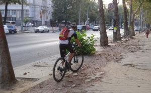 Кишиневских велосипедистов проинформируют о том, как ездить в городе