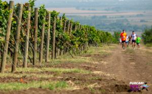 Starul TNT-ului rus va participa la Purcari Wine Run 2019