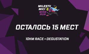 Milestii Mici Wine Run: осталось 15 слотов с дегустацией