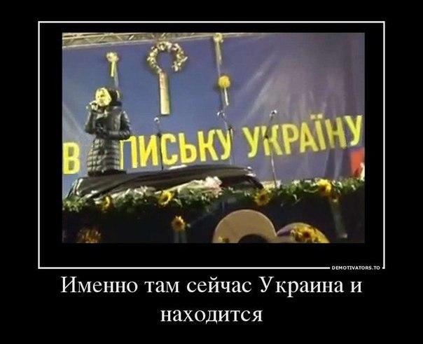 http://i.simpalsmedia.com/forum.md/comments/900x900/144c718157994bc48dd97a2759c467c7.jpg
